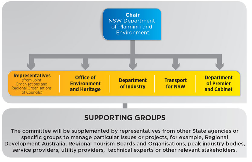New England North West coordination and monitoring committee chart