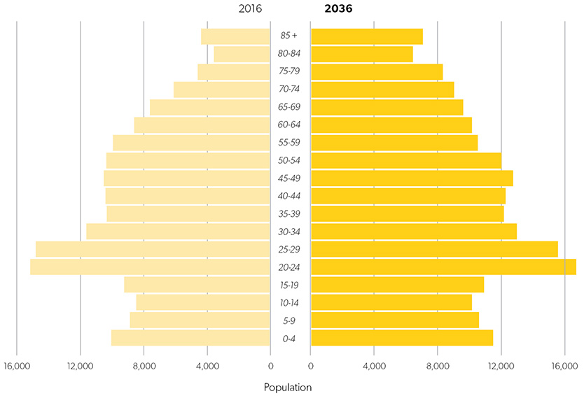 greater newcastle newcastle population pyramid 2016 to 2036 834x566