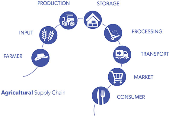 new england north west goal 1 agricultural supply chain 560x387