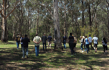 Communities visiting the Cumberland Plain in Shale Sandstone Transition Forest to help understand the importance of protecting the biodiversity in the area.